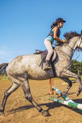 équitation activités loisir
