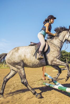 equitation activites loisirs